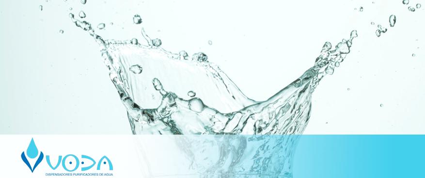 Read more about the article La importancia de tener agua en todo momento