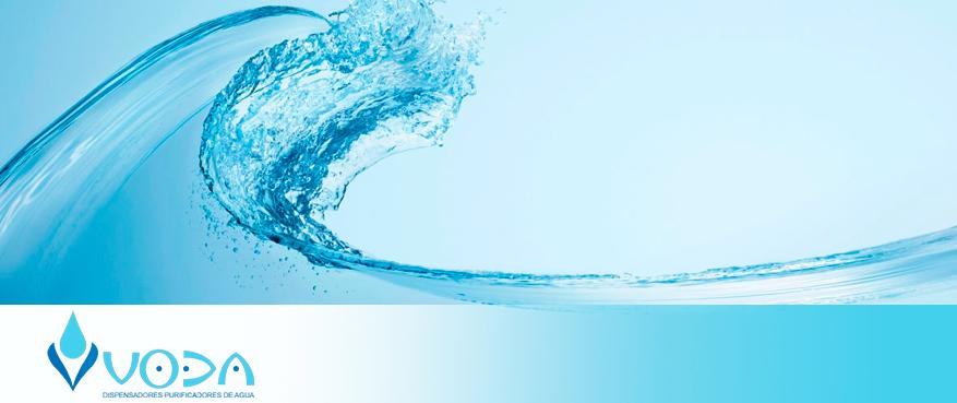 Read more about the article Purificadores y Dispensadores de agua, hidratación sana y sostenible